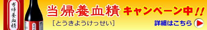 【当帰養血精キャンペーン】